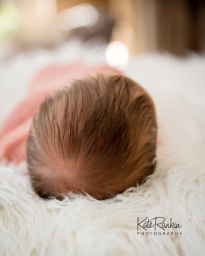Kate Rankin Photography - Harper Farrell Newborn Sized For Sharing-10