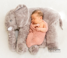 Kate Rankin Photography - Harper Farrell Newborn Sized For Sharing-19